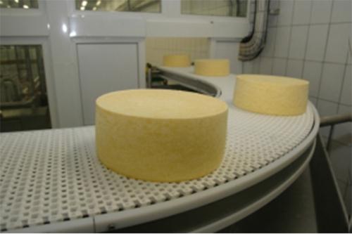Мини-завод по производству сыра