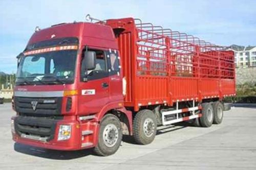 Тентовый грузовик FOTON BJ5313VNCJJ-S2
